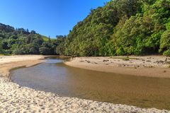 New Zealand beach with a stream running through it royalty free stock photos