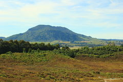 New Zealand. Beautiful picture of lovely New Zealand Royalty Free Stock Images