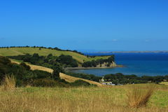 New Zealand. Beautiful picture of lovely New Zealand Stock Images