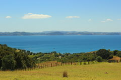 New Zealand. Beautiful picture of lovely New Zealand Royalty Free Stock Photo