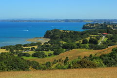 New Zealand. Beautiful picture of lovely New Zealand Stock Photos