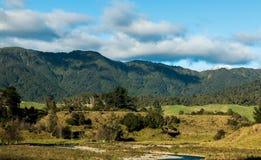 New Zealand Bush Hills Royalty Free Stock Photography