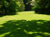 New Zealand: Christchurch botanic gardens lawn Stock Photo