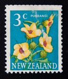 New Zealand circa shows image of puarangi flowers, circa 1979 Royalty Free Stock Image