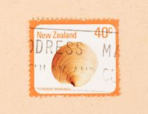 A stamp printed in New Zealand shows a shell Coarse Dosinia, circa 1980. NEW ZEALAND - CIRCA 1980: A stamp printed in New Zealand shows a shell Coarse Dosinia stock photo