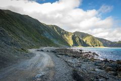 New Zealand Cliffs And Shoreline Stock Photos