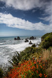 New Zealand Coastal Highway: A scenic road winds along the weste Royalty Free Stock Images