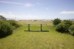 New Zealand Coastline. Stock Image