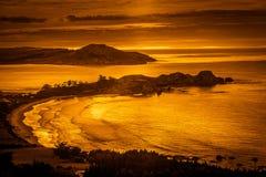 New Zealand coastline Stock Image