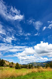 New Zealand countryside Royalty Free Stock Photos