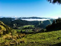 New Zealand Countryside, bush and hunting in 2017. Deer Hunting, New Zealand Bush and forest in 2017nin the Whanganui and Hunterville area Royalty Free Stock Images