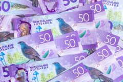 New Zealand currency $50, New Zealand Dollar banknotes show kokako blue wattled crow.  royalty free stock photography