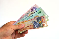 New Zealand Dollar banknotes Royalty Free Stock Image