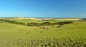 New Zealand Far North landscape Royalty Free Stock Photography