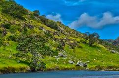 New Zealand Far North Landscape Stock Photos