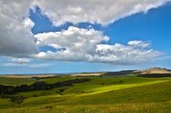 New Zealand Far North Landscape Stock Image