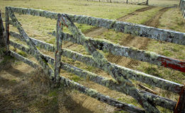 New Zealand farm gate Royalty Free Stock Photography