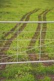 New Zealand farm. Royalty Free Stock Photo