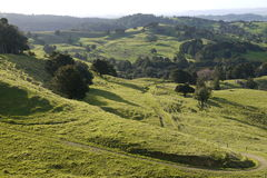 New Zealand: farmland landscape with track - h Royalty Free Stock Photo