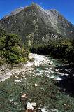 New Zealand Fiordland Royalty Free Stock Images