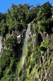 New Zealand Fiordland Arkivbilder