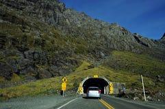New Zealand Fiordland Royalty Free Stock Image