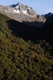 New Zealand Fiordland Royalty Free Stock Photography
