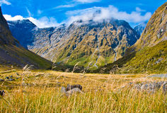 New Zealand Fiordland Royalty Free Stock Photography