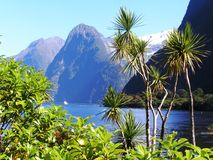 New Zealand fjords Stock Photography