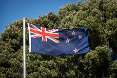 New Zealand Flag Flying In Front Of Native Pohutukawa Trees. The flag of New Zealand is a defaced Blue Ensign with the Union Flag in the canton, and four red Royalty Free Stock Image