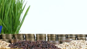 New Zealand flag waving with stack of money coins and piles of wheat. And rice seeds stock footage