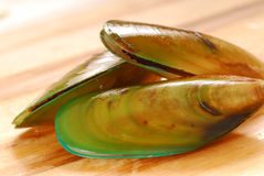 New Zealand green-lip mussels Stock Photo