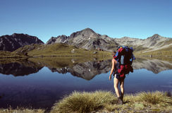 New Zealand hiker. Hiker on the Sabine Track, Nelson Lakes National Park, New Zealand Royalty Free Stock Images