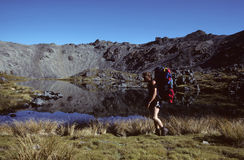 New Zealand hiker Royalty Free Stock Image