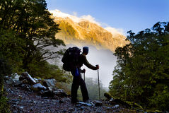 New Zealand Hiking. A hiker pauses for a rest in the mountains on the Milford Track, New Zealand Royalty Free Stock Photo