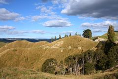 New Zealand hills. New Zealand - hills of Manawatu-Wanganui region Royalty Free Stock Photos