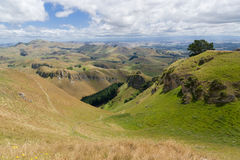 New Zealand Hills Stock Photos