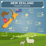 New Zealand  infographics, statistical data, sights. Royalty Free Stock Photo