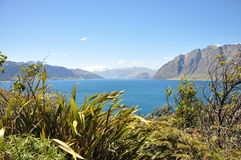New Zealand Lake. Green grass, hills, new zealand royalty free stock photography
