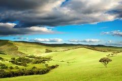 New Zealand landscape. Beautiful landscape at sunset, New Zealand Royalty Free Stock Photos