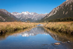 New Zealand Landscape Stock Image