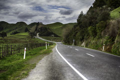 New Zealand. Landscape from the Forgotten World Highway Royalty Free Stock Images