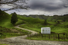 New Zealand. Landscape from the Forgotten World Highway Stock Photography