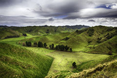 New Zealand. Landscape from the Forgotten World Highway Royalty Free Stock Photos
