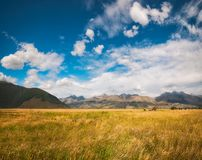New Zealand landscape with golden grasses. And mountain range at the remote Kinloch-Glenorchy Road in Otago Region, New Zealand, South Island Royalty Free Stock Photography