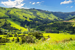 New Zealand Landscape. New Zealand, Landscape of the road to Akaroa, the south island Royalty Free Stock Image