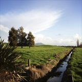 New Zealand Stock Photography