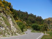 New Zealand landscape in summer. New Zealand South Island landscape in summer , between Waipara and Kaikoura royalty free stock photo