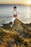 New Zealand lighthouse cape palliser Stock Photography