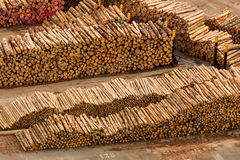 New Zealand Logs Stock Photo